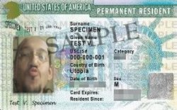 Ejemplo Green Card